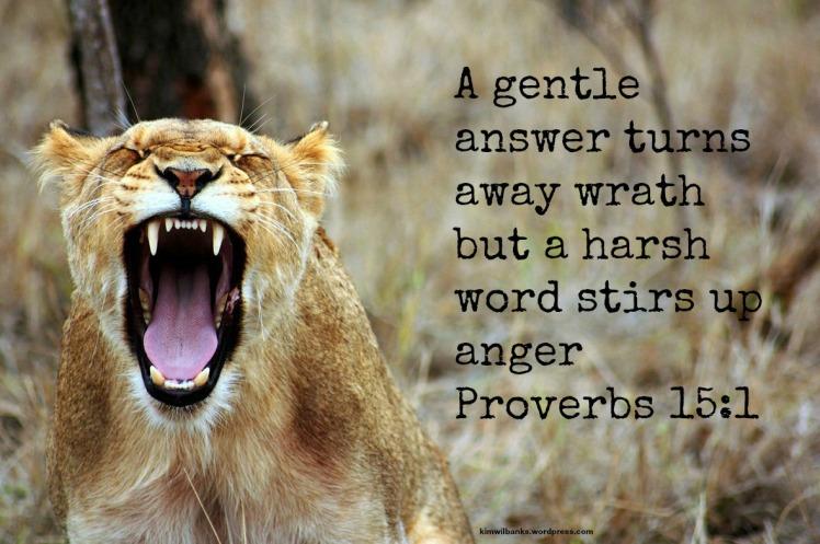 Lion - Gentle answer 2