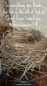 Empty Nest Give Thanks