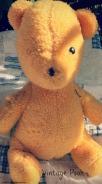 My Winnie-the-Pooh Pin