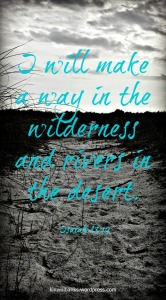 Wilderness Pin 2