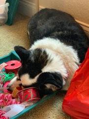 Giftwrapping Helper