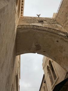 Bird flying over arch on the Via Dolorosa