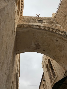 Bird flying over arch on the Via Dolorosa