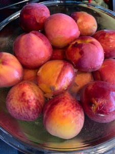 Bowl of Whole Peaches