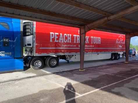 Peach Colored Semi-truck