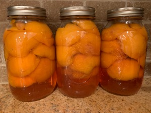 Three glass jars of peaches