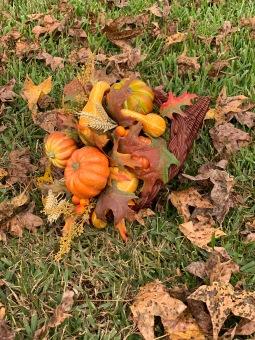 Cornucopia With Fall Leaves