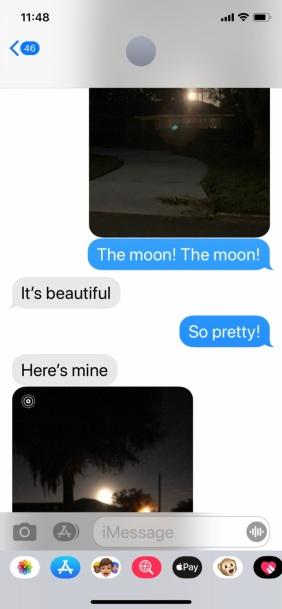 The Moon! The Moon!